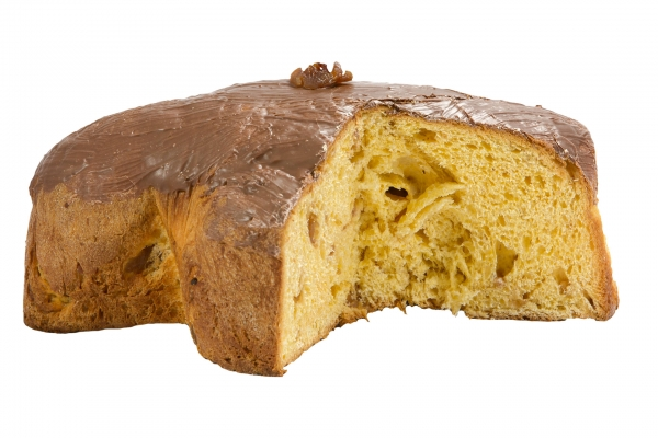 Chestnut Colomba